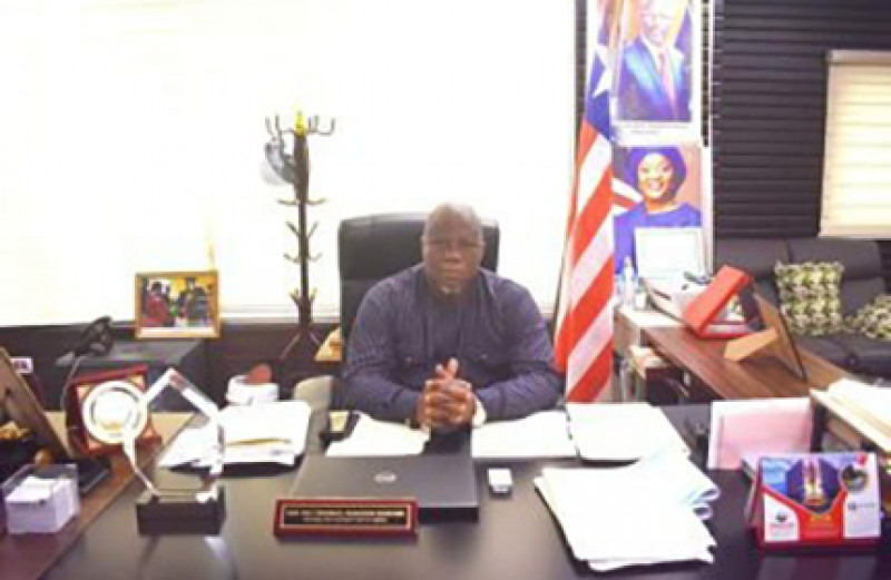 Profile: Hon. David F. Williams, Managing Director, National Port Authority